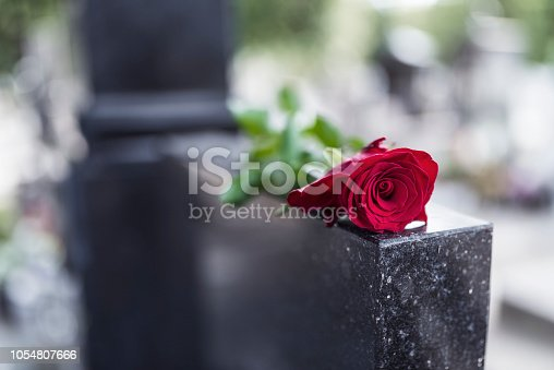 istock Red rose on grave 1054807666