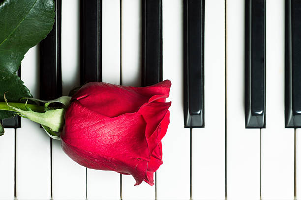Red rose on piano keyboard abstract music background picture id535938929?b=1&k=6&m=535938929&s=612x612&w=0&h=jpf3g8v0nysg9rkaxd dsow7jowsqwdlatufhgojxlw=