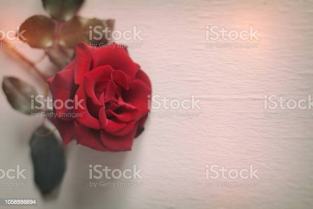 Red rose on wooden background vintage greeting card picture id1058886694?b=1&k=6&m=1058886694&s=612x612&h=uosjwzgq77qpnf1ys6p2  lcg xrzkzuwdbdjqflxrk=