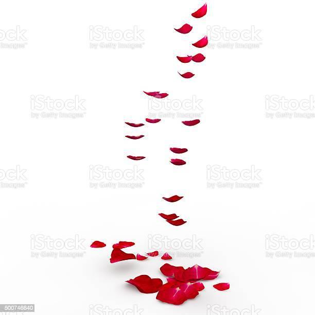 Red rose petals are flying to the floor picture id500746640?b=1&k=6&m=500746640&s=612x612&h=ortu4kbojybddsqorl2vytr9avazu6xtyfm c5wkdx8=