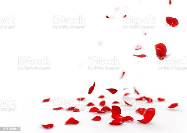 Red rose petals fall to the floor picture id926196842?b=1&k=6&m=926196842&s=612x612&h=5k58dzj7145ekbc8r89i k ytzq0k3earh67xpr9k7u=