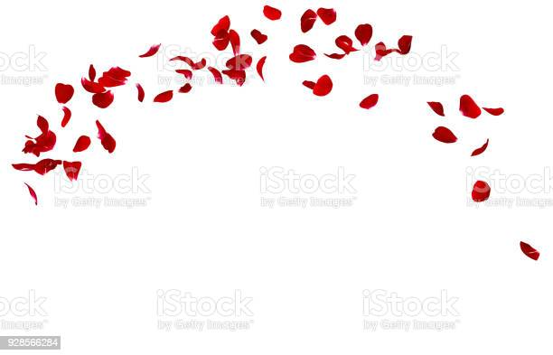 Red rose petals fly in a circle the center free space for your photos picture id928566284?b=1&k=6&m=928566284&s=612x612&h=p3bswwbv7xl tvp0llpvlqpo1bmslmu9sd5pavdubrq=