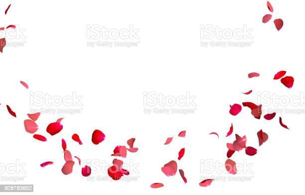 Red rose petals fly in a circle the center free space for your photos picture id928783652?b=1&k=6&m=928783652&s=612x612&h=c9cr7ewvaq1gc8d01neszqz50prwcdbupxm1dhe8vuk=
