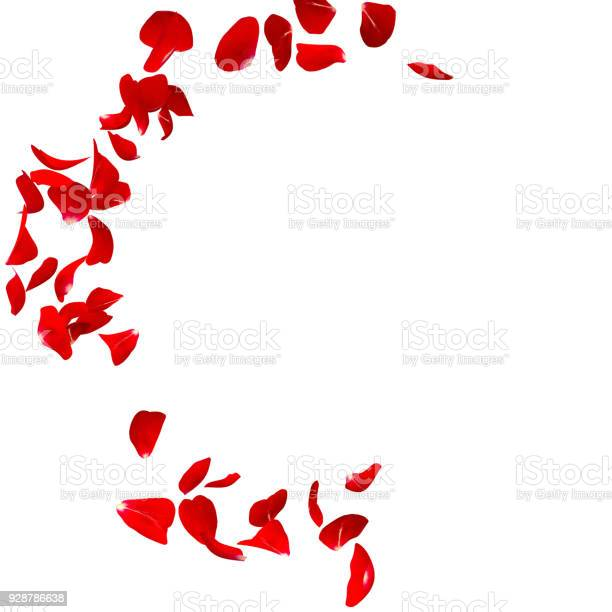 Red rose petals fly in a circle the center free space for your photos picture id928786638?b=1&k=6&m=928786638&s=612x612&h=jcc0ptzfzvfer3 lsgcynmnuoay3hhknxz0egagahva=