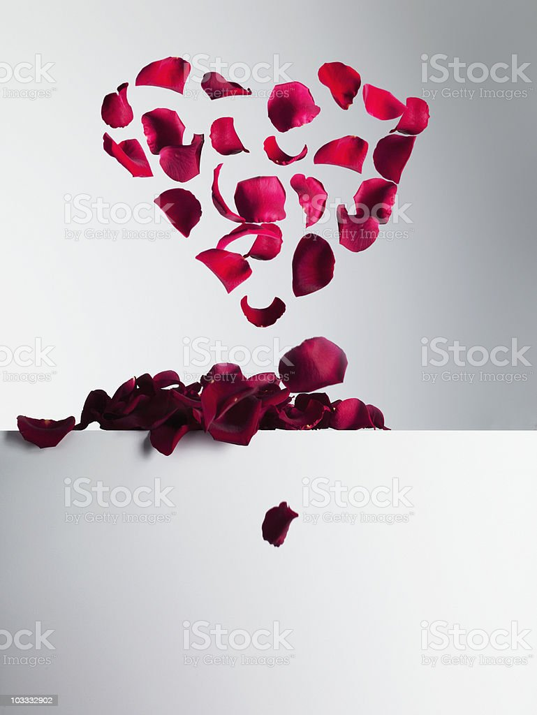 Red rose petals forming heart-shape stock photo