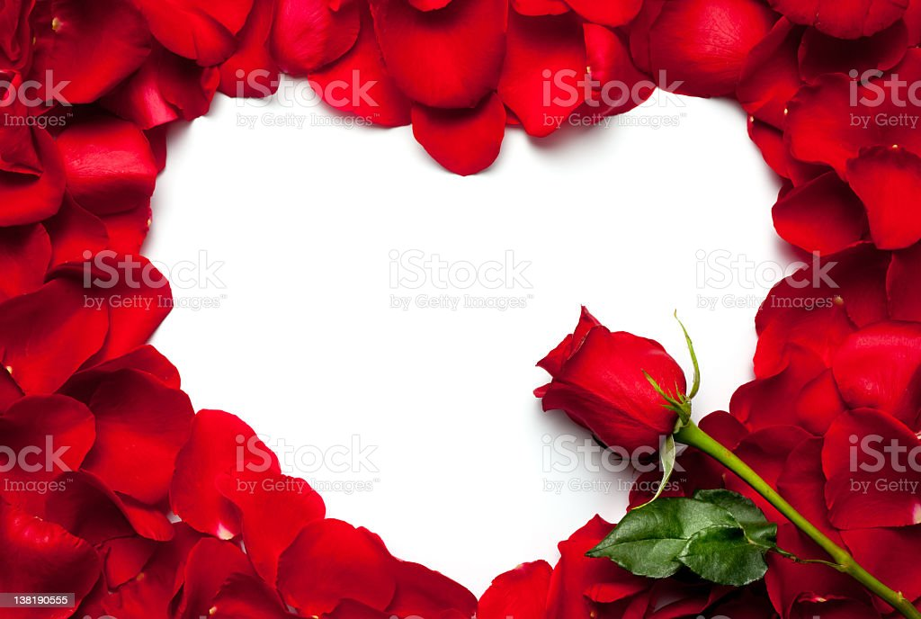 red rose petals frame stock photo amp more pictures of frame
