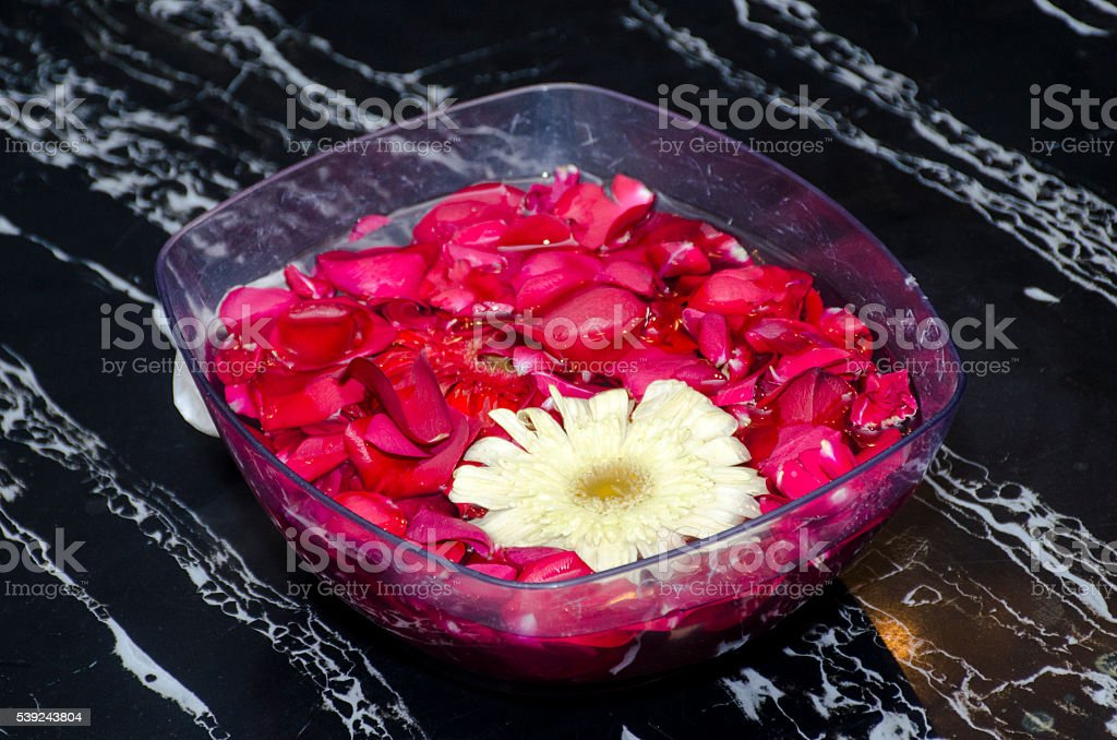 Red rose petals in bowl royalty-free stock photo