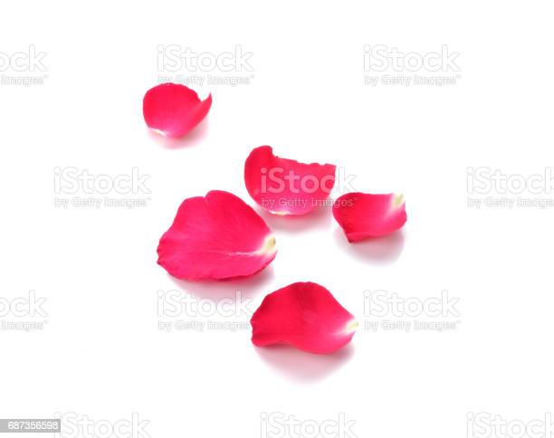 Red rose petals on white background picture id687356598?b=1&k=6&m=687356598&s=612x612&h=0cm1nf0cidlnughvr4pcuzytewyknixzoajaqc cyno=