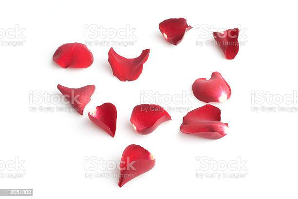 Red rose petals picture id118051303?b=1&k=6&m=118051303&s=612x612&h=olubzx7a5dzvyeaobow7xkwzjiptmdlnr jnslmvvl0=