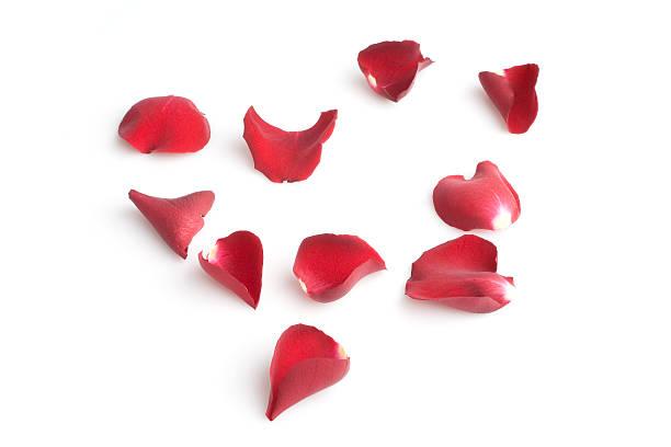Red rose petals picture id118051303?b=1&k=6&m=118051303&s=612x612&w=0&h=vx1prpaehirl4i8mjlk9j0lov9ngmt1jpooeoiwjipo=