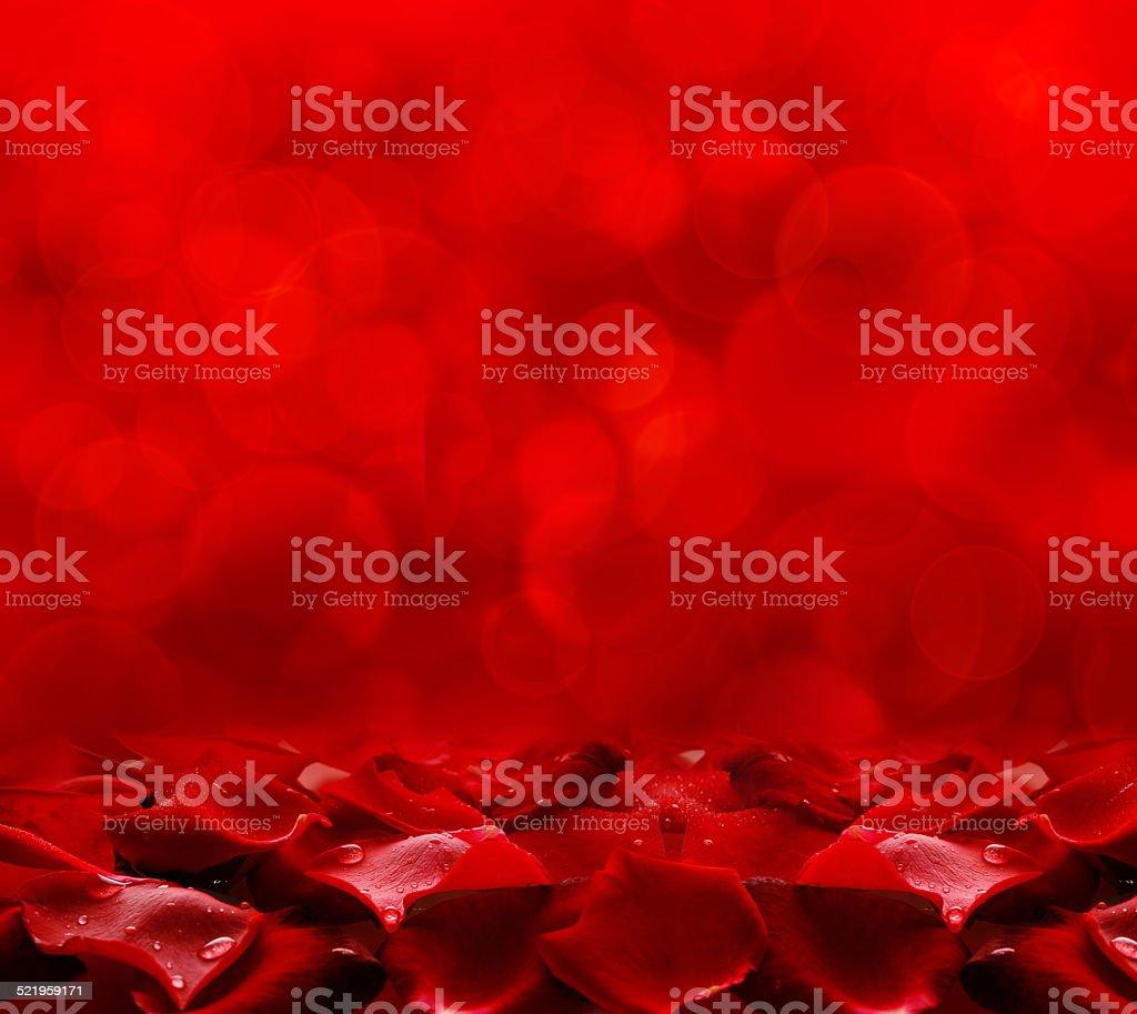 Red rose petals. stock photo