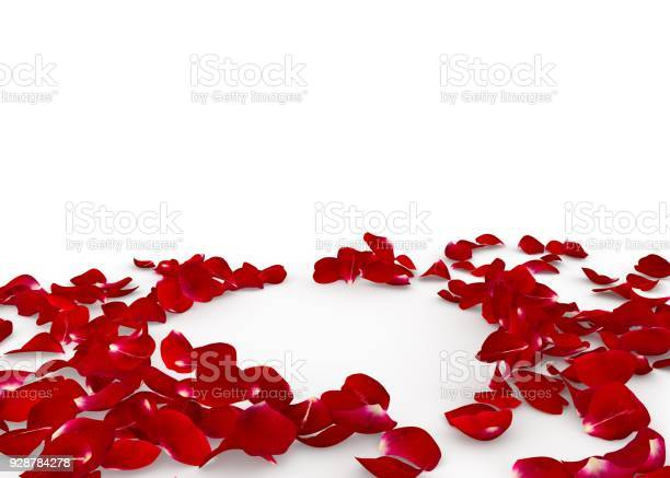 Red rose petals scattered on the floor in the center an empty space picture id928784278?b=1&k=6&m=928784278&s=612x612&h=7vu5nbuwhktxmyeovfjzrnrcuohiuqpy radoufw6ci=