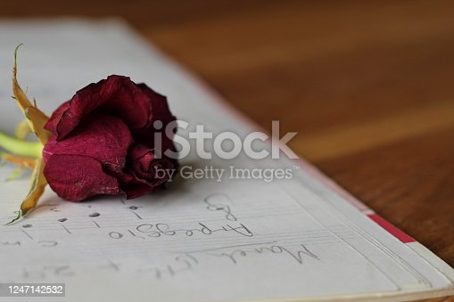 Dried Red Rose on musical notes, love songs, heartbroken, gives off different feelings or ideas. Focus is on the rose itself.