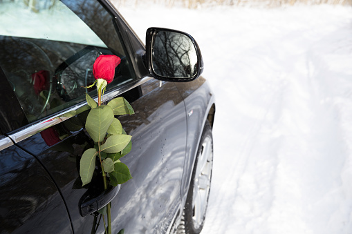 beautiful red rose and black car, surprise for a loved one