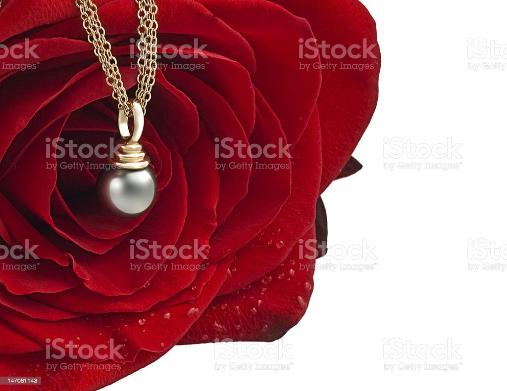 Red rose with pearl royalty-free stock photo