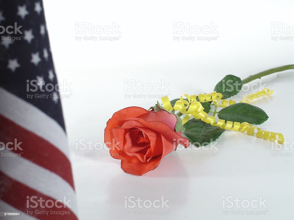 Red Rose Yellow Ribbon  Flag royalty-free stock photo