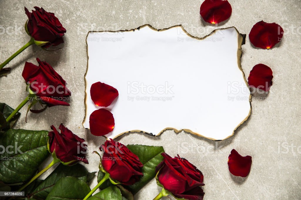 red roses and a blank invitation card roses and vintage paper stock