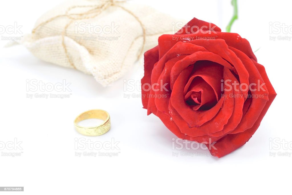Red Roses And A Gold Ring Isolated White Background Valentines Day