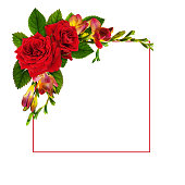 istock Red roses and freesia flowers in a floral corner arrangement with a frame 1172882152