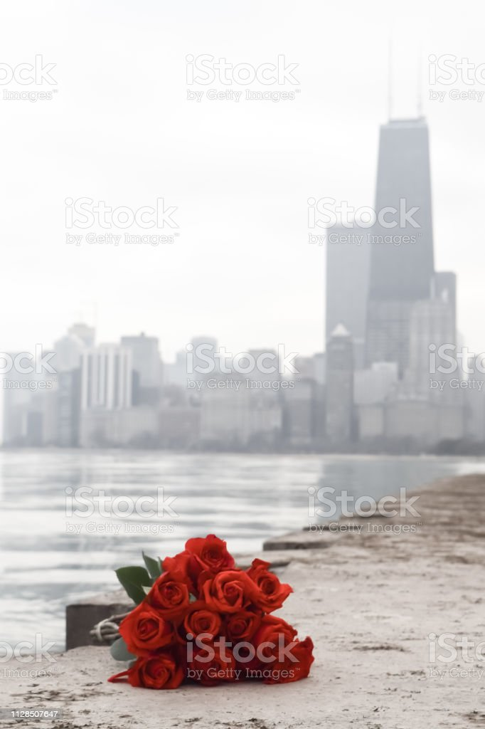 Red Roses and the John Hancock Building- A View from North Avenue Beach, Chicago stock photo