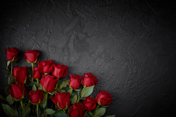 Red roses are placed on a black textured background. A sign of condolence, sympathy loss. Space for your text stock photo