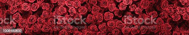 Red roses background picture id1006480632?b=1&k=6&m=1006480632&s=612x612&h=bhdgogjzhtl qvxlpy8xph1r nfawz3u6bxgevpqsjo=