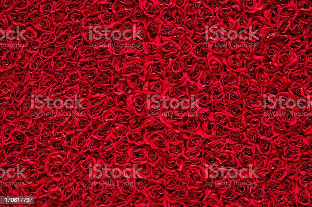 Red roses background picture id170617797?b=1&k=6&m=170617797&s=612x612&h=xkmiejax8sfnrqjibf3ombwafvd57zbo4jxqlyqmk s=