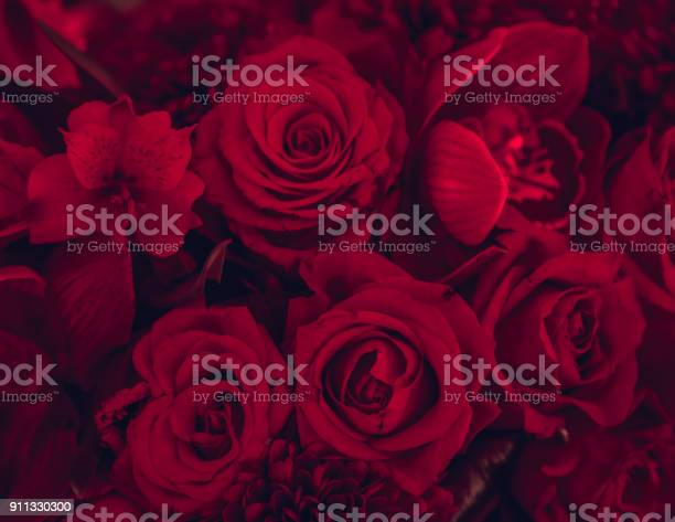 Red roses background picture id911330300?b=1&k=6&m=911330300&s=612x612&h=ll6rb rkgfji4oivuho6kgbhjowrlvqqrenqfwpm8ha=