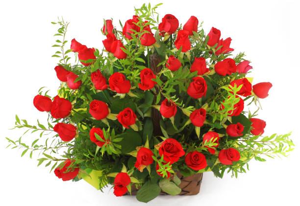 Red roses basket isolated on the white background picture id1135330266?b=1&k=6&m=1135330266&s=612x612&w=0&h=0shnfu60jlv5yaiexvl xa wsvhtbx6jzqdii uzgo4=