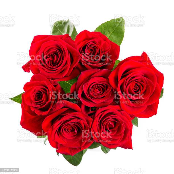 Red roses bouqet isolated on white background picture id629162082?b=1&k=6&m=629162082&s=612x612&h=pm5oe 0wl3zavwjqlcmd rvetlkgusi7aurfxubmlcq=