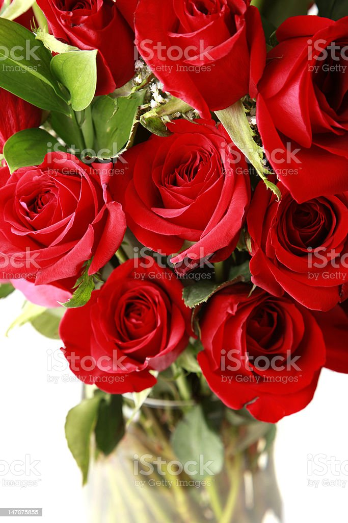 Red Roses Bouquet Close Up royalty-free stock photo
