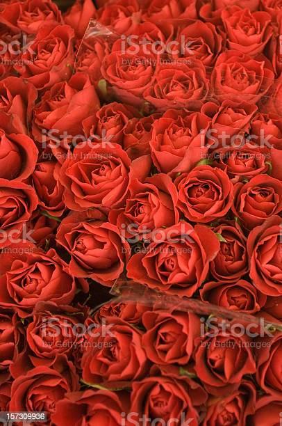 Red roses bouquet pattern vivid background picture id157309936?b=1&k=6&m=157309936&s=612x612&h=g4v ipr a5rwibjgf0dnglhneejssqo9t43 taeojqq=