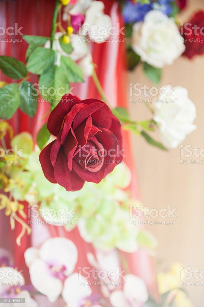 bouquet de roses rouges photo libre de droits