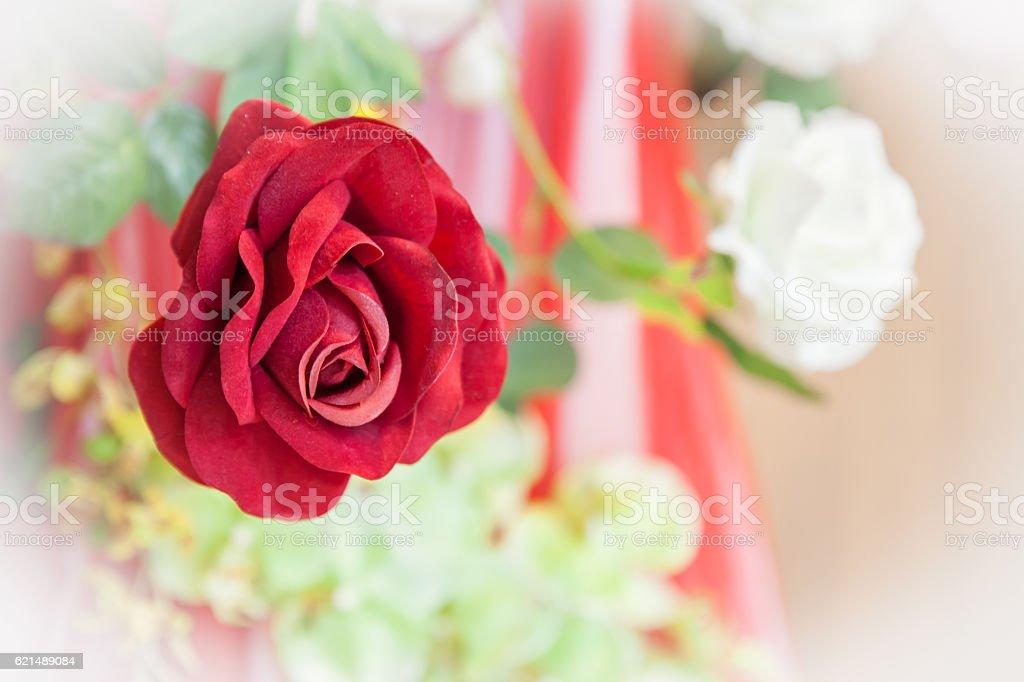 Rote Rosen bouquet Lizenzfreies stock-foto