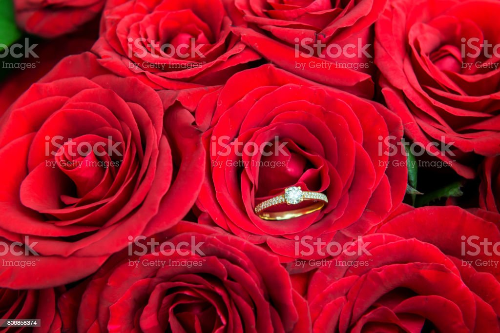 Red roses & diamond ring stock photo