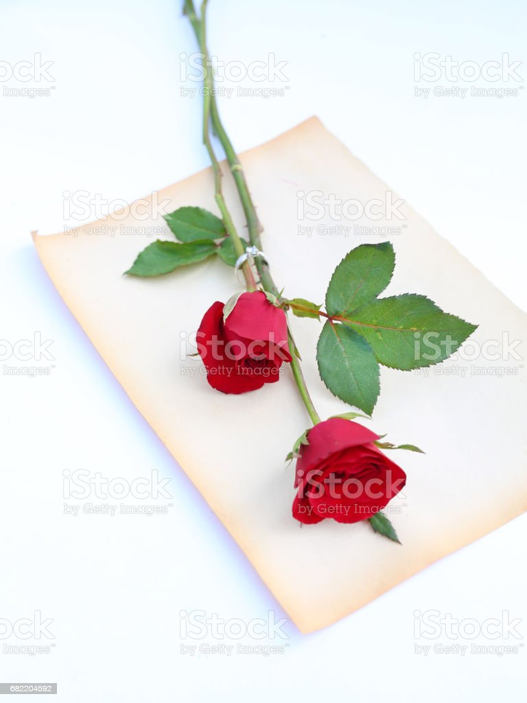 Red Roses Flower With Wedding Ring On Old Brown Paper Against White