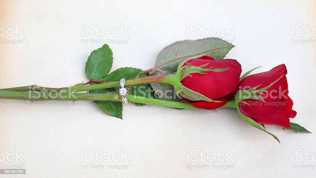 Red roses flower with wedding ring on old brown paper background. ロイヤリティフリーストックフォト