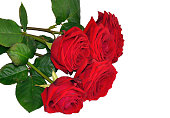 istock Red roses flowers bunch bouquet isolated on white, wedding beauty card background decoration 912945224