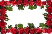 istock Red Roses Frame. 459344599