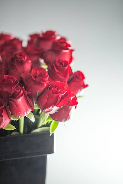 Red roses in black bucket picture id638766064?b=1&k=6&m=638766064&s=612x612&w=0&h=oekjch igi5uksdw0 0fupxtxbia4rz91d3lrudojoo=