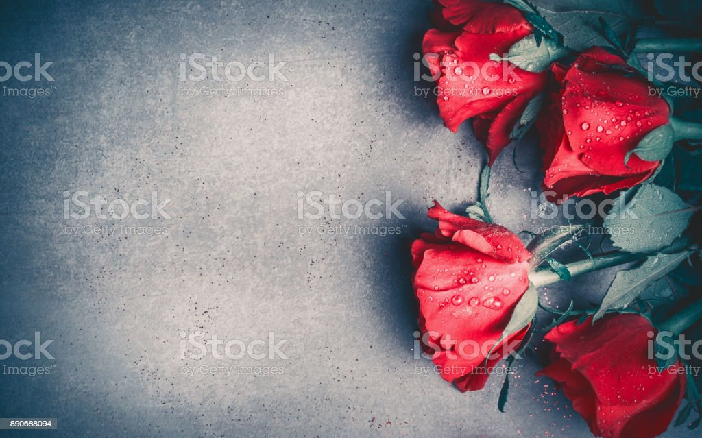 Red Roses Layout On Gray Desktop Background Top View Valentines Day Dating And Love Greeting Card Stock Photo Download Image Now Istock