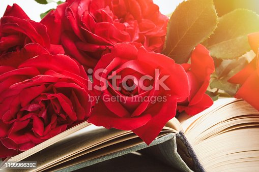 Red roses on an open book on a light stone background. The concept of romantic literature. Flat lay, top view.
