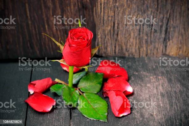 Red roses on the old wooden floor picture id1084825824?b=1&k=6&m=1084825824&s=612x612&h=bdqiu qlkm5qiqovmrgqpd7zbxgzpfwf 2ct6linfsu=