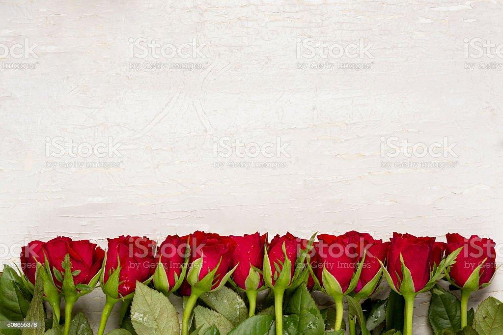 Rosas vermelhas no branco plano de fundo. Dia dos namorados dia plano de fundo. Feliz dia das mães. - foto de acervo