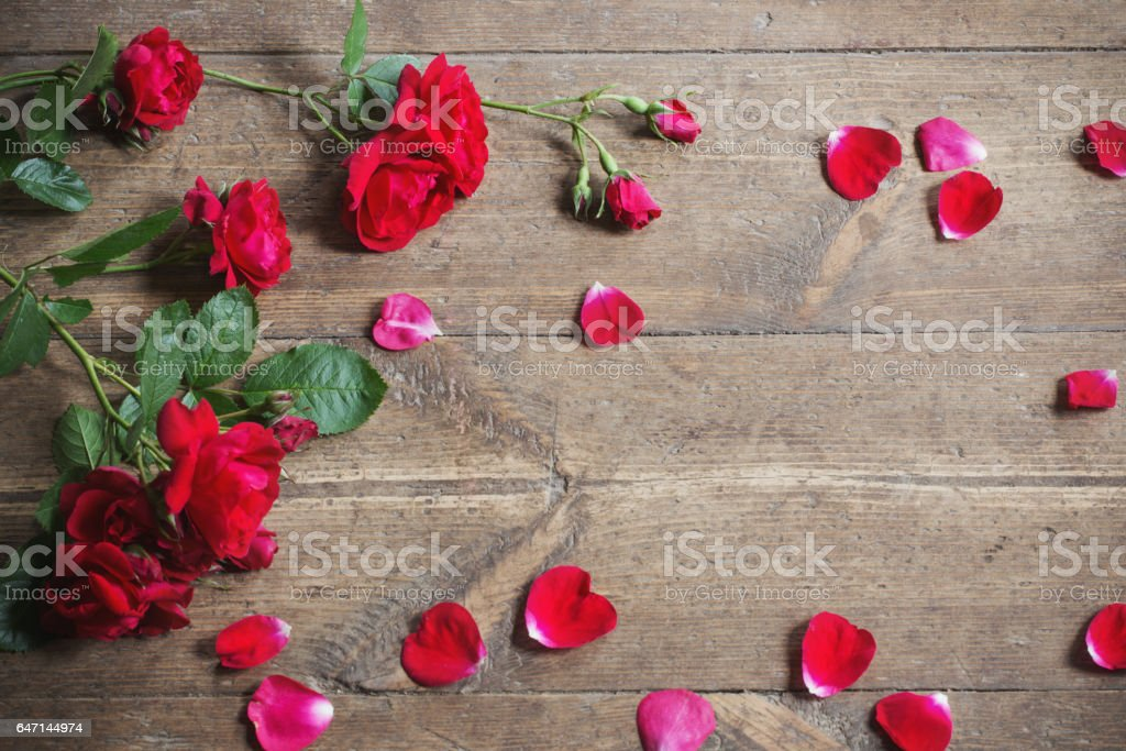 Red roses on wooden background. stock photo