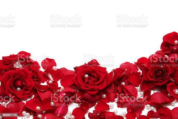 Red roses petals and pearls scattered on a white surface picture id96880730?b=1&k=6&m=96880730&s=612x612&h=jrbippvsrkbkd8jsrz2v43v7paaixrngeiljzssdnlw=