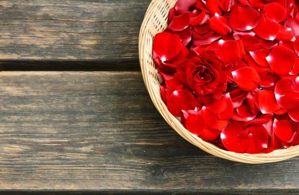 Red roses picture id1034945176?b=1&k=6&m=1034945176&s=612x612&w=0&h=vqvs367pf1d emqp3eqjrqgb9zfus xerblcf5b0ne0=