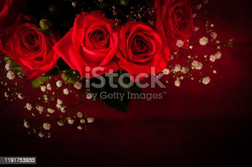 A close up of read roses with a blurred dark background