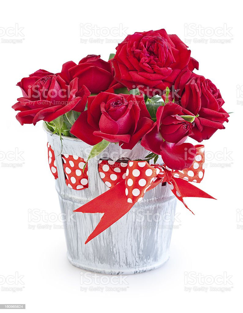 Rote Rosen – Foto