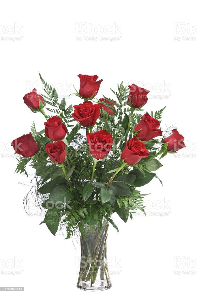 Red Roses (XL) stock photo